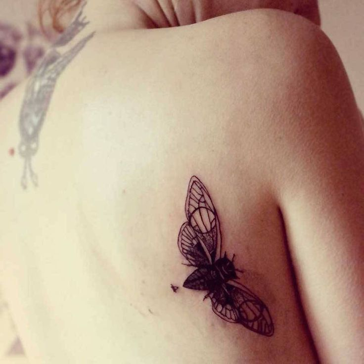 Best Tattoos Images On Pinterest Tattoo Designs Art - Beautifully simple animal tattoos by cheyenne