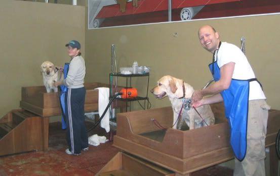 dog washing station  | dog wash station photo luck-dog-wash-5.jpg