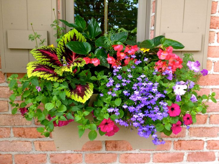 Hanging Basket For Porch Railing Front Garden Pinterest Porches Railings And Hanging Baskets