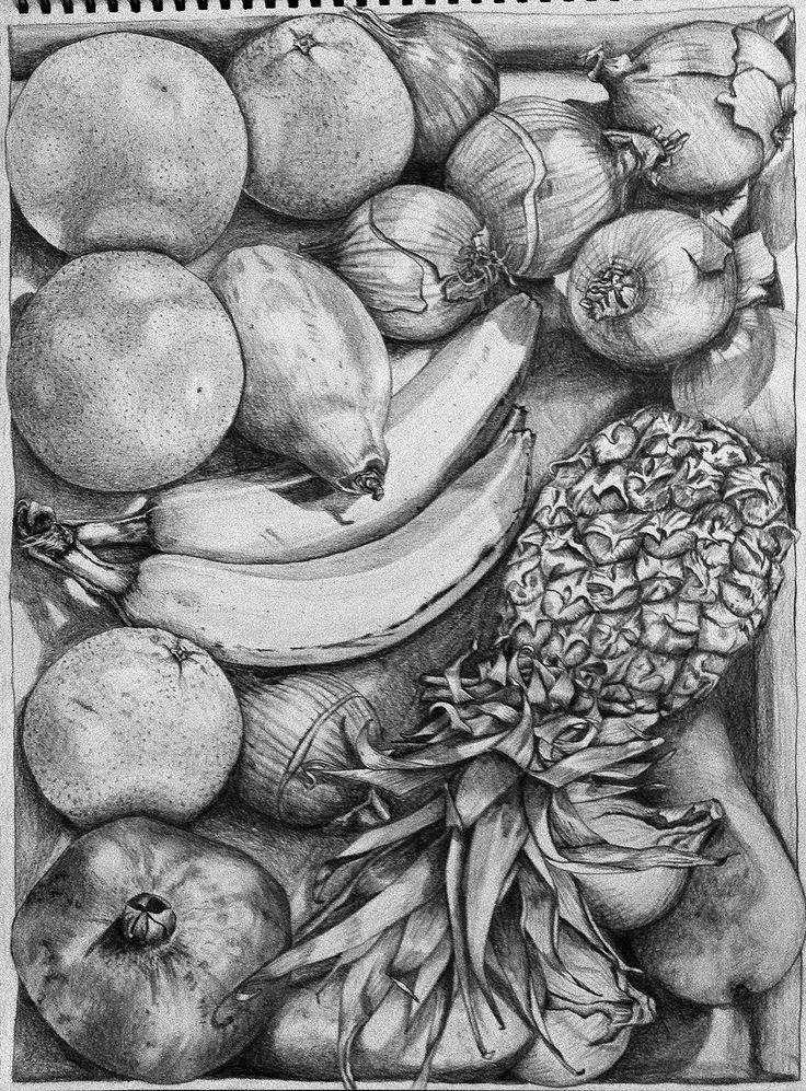 """Composition of natural objects"" - Emma Hunt {contemporary art botanical still life fruit drawing #loveart}"