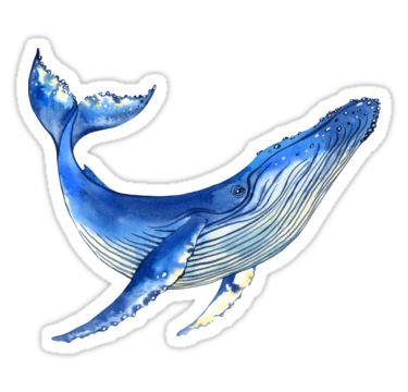 """Watercolor whale"" Stickers by Evgeniia Zagreeva | Redbubble"