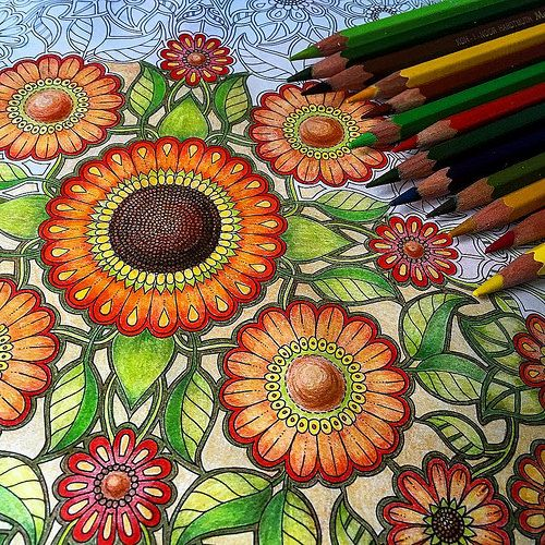 Best 25 secret garden coloring book ideas that you will Coloring books for adults johanna basford