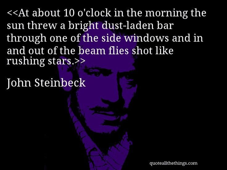 At about 10 o'clock in the morning the sun threw a bright dust-laden bar through one of the side windows and in and out of the beam flies shot like rushing stars.-- John Steinbeck
