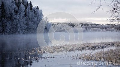 River and forest in Savast in the North of Sweden, winter scene.