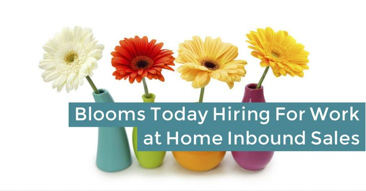 Are you interested in doing some temporary phone work from home for Valentine's Day and other seasons? Blooms Today may be hiring!