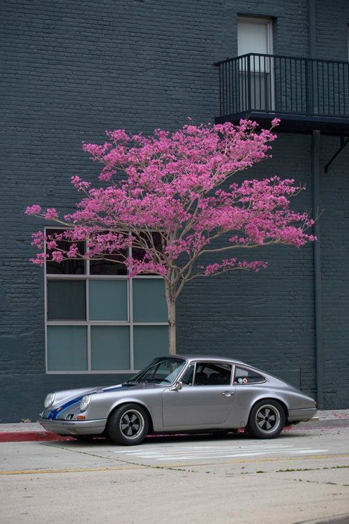cherry tree used cars 80 best classic porsche images on cars cars and porsche 911
