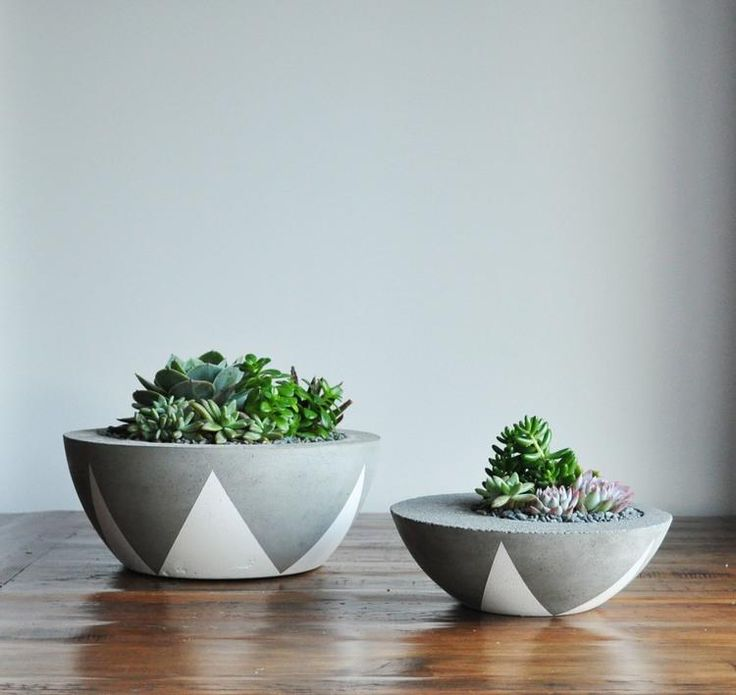 Concrete bowels look amazing as planters or can  be used as a decorative bowel around the house.   Loving them with the splash of green.