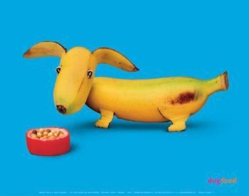 Banana Dog! Hee Hee @Shannon Bellanca James! Looks like your baby girl!: Fun Food, Fruit, Dogs, Bananas, Funny Food, Bananadog, Foodart, Food Art
