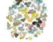 Aquarelle Originale Fleurs Multicolores et Fourmis Noires #2 : Peintures par thevy-guex