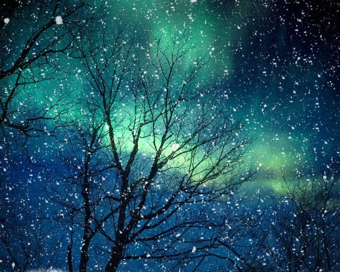 Nature photography winter photography northern lights snow photo blue green starry night falling night zodiac astrology - Aurora 8x10. $30.00, via Etsy.