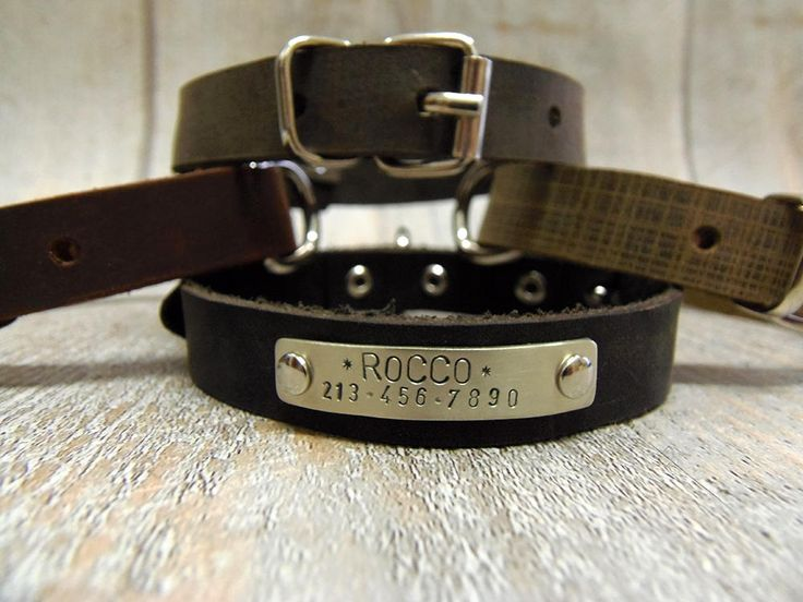 Dog Collar, Leather Dog Collar, Dog Collar Leather, Personalized Dog Collar, Dog Collar Personalized, Small Dog Collar, Pet Gift, Dog Gift by VacForPets on Etsy