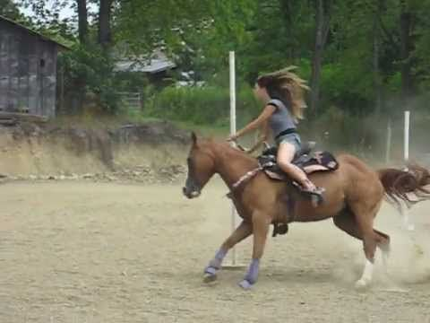 bridleless pole bending. Guts, lots of trust and a good horse