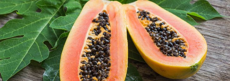 Benefits of Paw Paw Ointment - Our Blog Nutrition Benefits of Paw Paw Ointment - Paw Paw has long been eaten for its great taste and digestive benefits. Many eat it for relief from constipation, diarrhoea and ulcers. It is common for the Paw Paw fruit to be fermented and made into an ointment which is useful for many common issues.