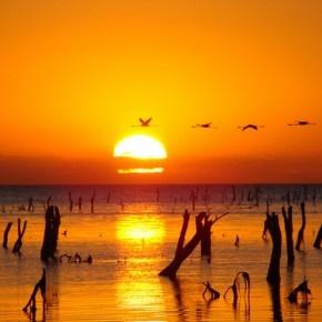 Mar Chiquita (5ta laguna salada más grande del mundo) / 5th largest saltwater lake in the World | Córdoba, Argentina