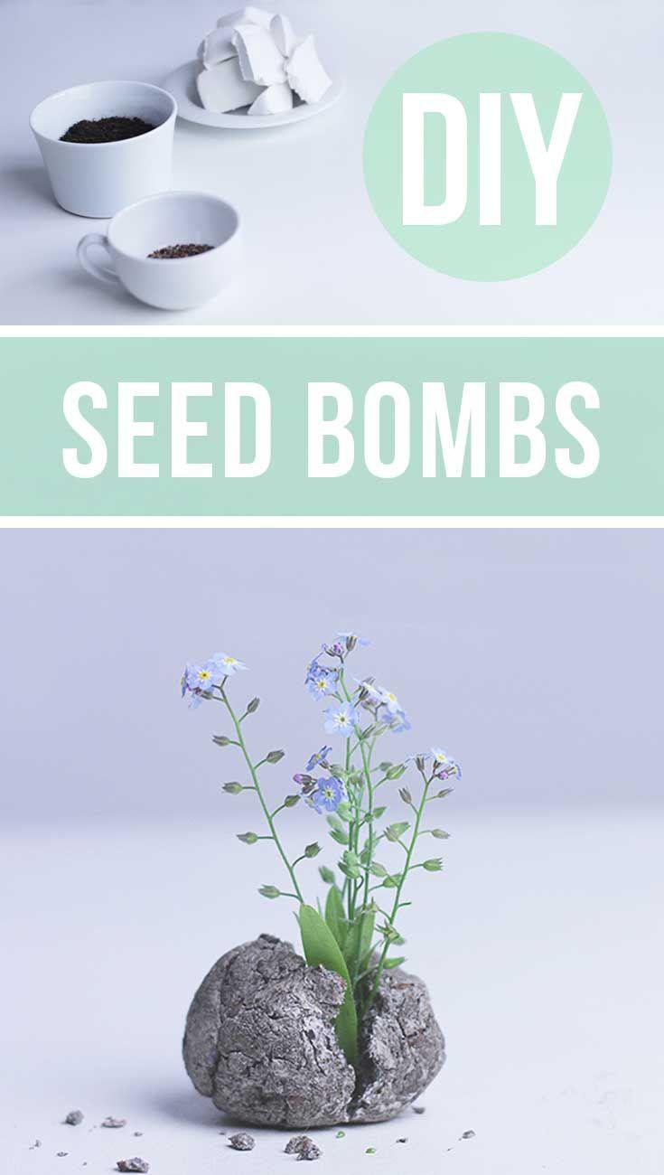 Seed Bombs selber machen - Seedbombs DIY | Kleine Geschenke selber machen - Geschenkidee - Basteln im Sommer
