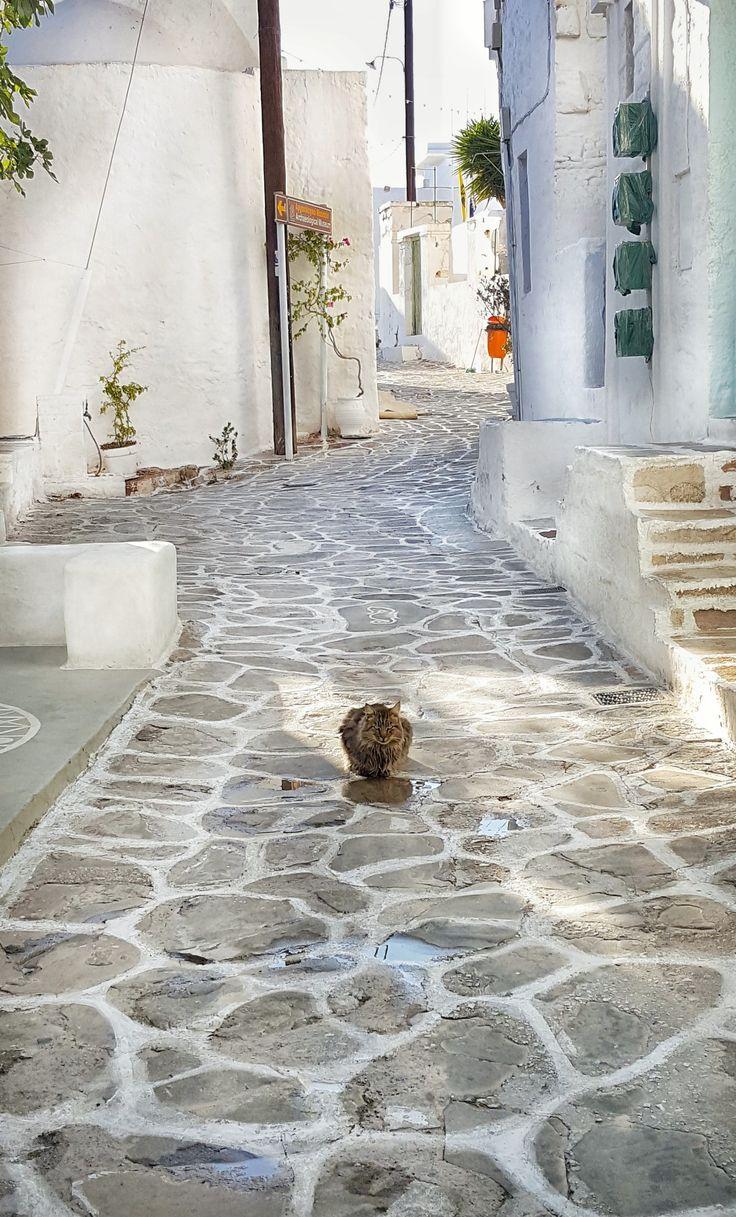 Feeling lonely! Kimolos island #seeyouinKimolos