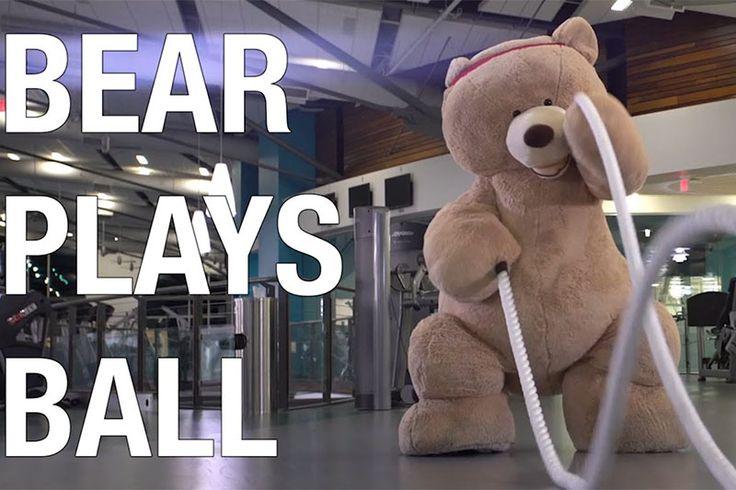 Медведь играет в американский футбол  Забавный ролик об одном медведе, который любил обниматься. Но в один момент его обидели игроки контактной и грубой игры в американский футбол. Но медведь разозлился... #супер #жизньпрекрасна #видео  https://mensby.com/video/entertainment/7577-bear-plays-football