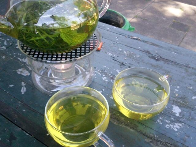 thee van kleefkruid en citroenmelisse - KOKEN MET ONKRUID