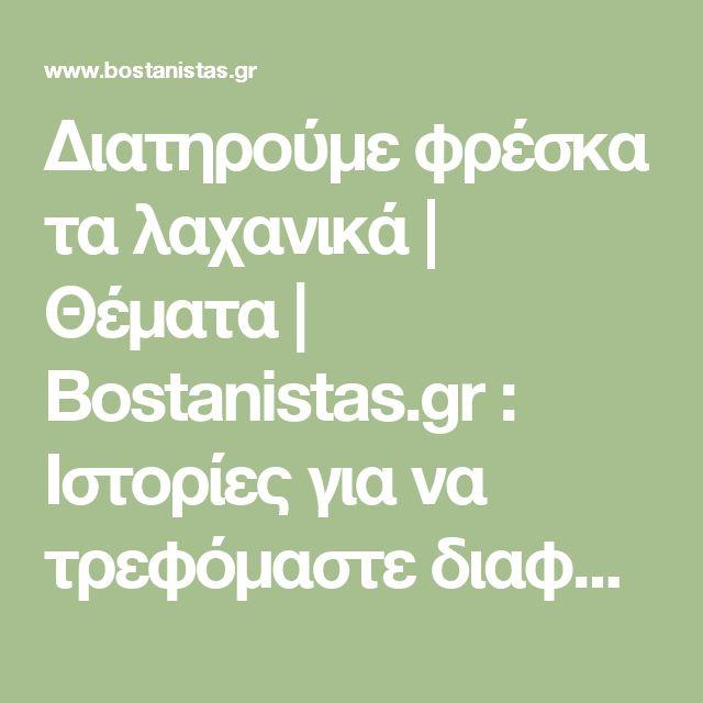 Διατηρούμε φρέσκα τα λαχανικά | Θέματα | Bostanistas.gr : Ιστορίες για να τρεφόμαστε διαφορετικά