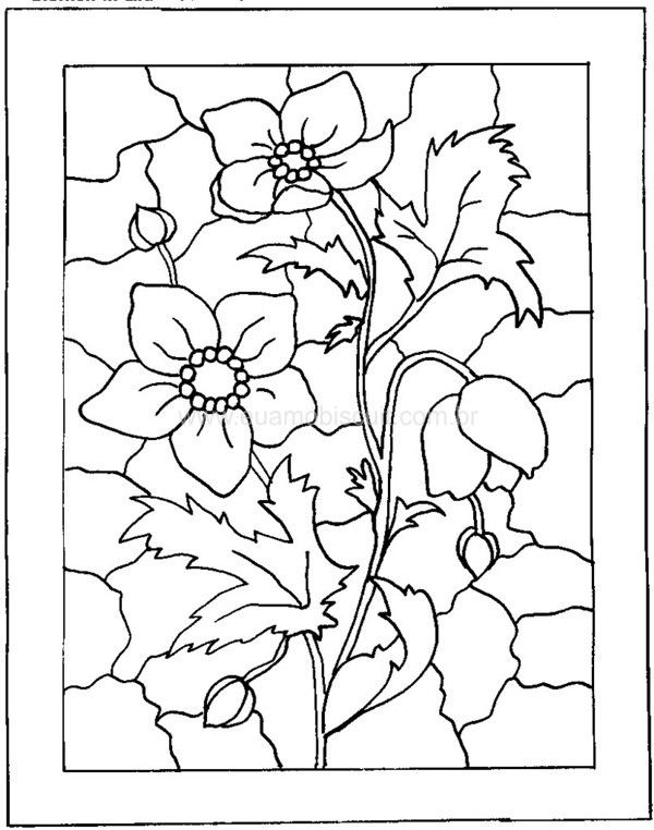 Adult Coloring Pages Books Colouring Stained Glass Patterns Mosaic Pergamano Embroidery Ideas Hand