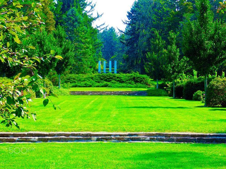 Peaceful Garden - null