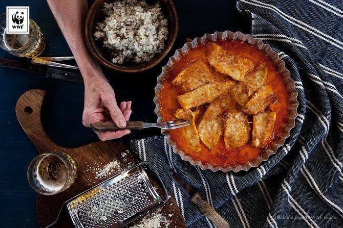 Lämmittävä curryhauki ja ohratto