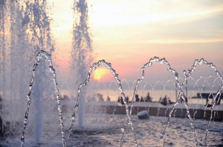 #фонтан #вечер #вдк #владивосток #дарумафото #darumafoto #bird #nature #city #vdk #vladivostok