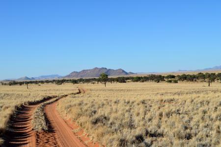 Namib Desert Road Taken en route to a wedding last year - stunning views