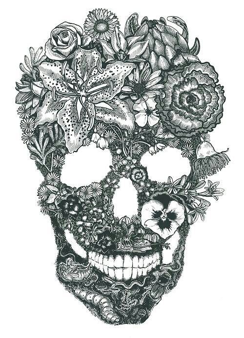 Pin by Jenny Ortiz on More skulls
