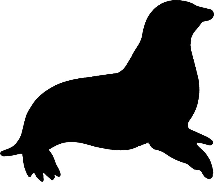Walrus Clipart Black And White   Clipart Panda - Free Clipart Images