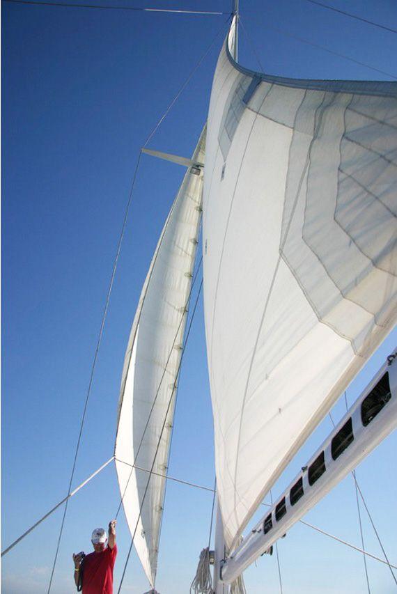 Bassa California del Sur, Cabo San Luca: gita in catamarano.