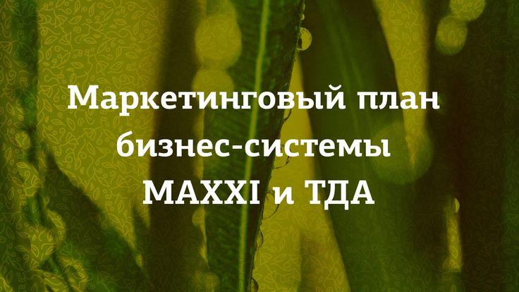 Маркетинговый план «maxxi»