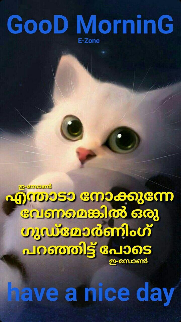 Pin By Eron On Good Morning Malayalam Good Morning Wishes Good Morning Good Morning Beautiful