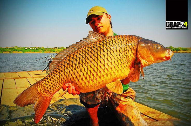 Greutatea optima a plumbului de pescuit la crap - De fapt, cât de greu ar trebui să fie un plumb de #pescuit la crap?  Detalii aici >>> http://bit.ly/1h6cywu