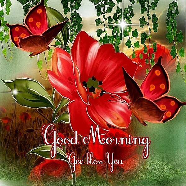 Good morning!! God bless you!