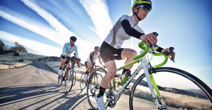 The Very Best Road Bike Brands