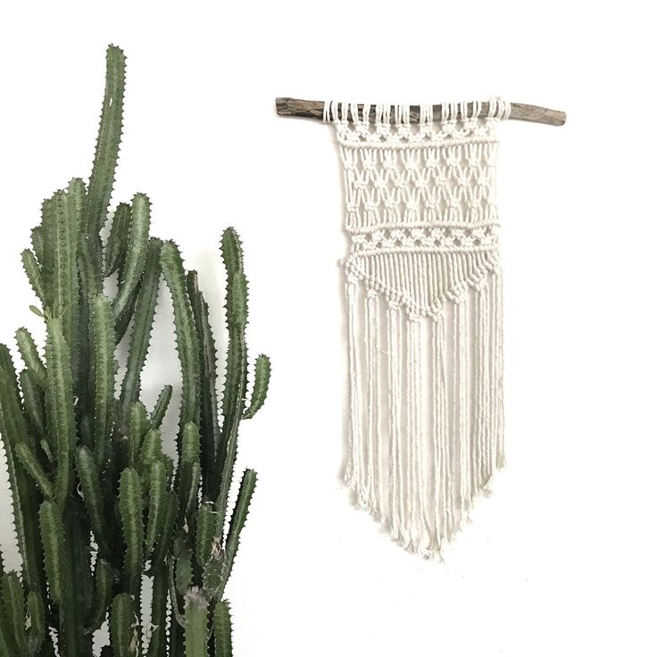 """Macrame Wall Hanging on Driftwood 