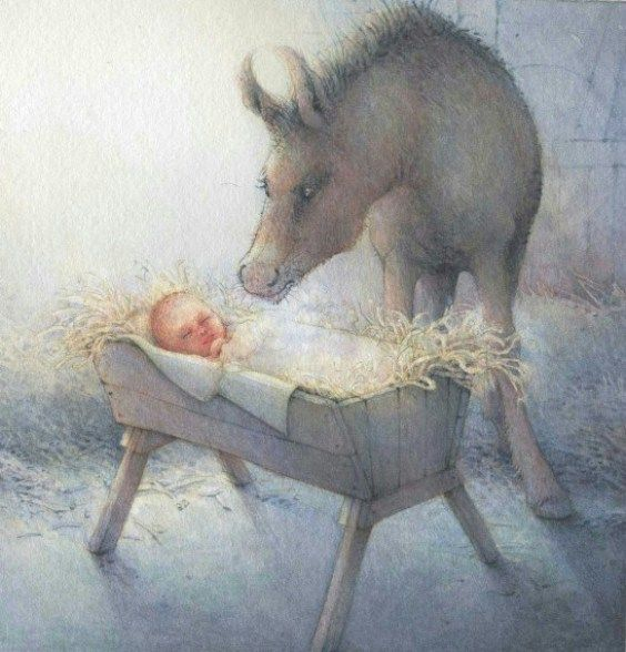 Review: De ezel en de os