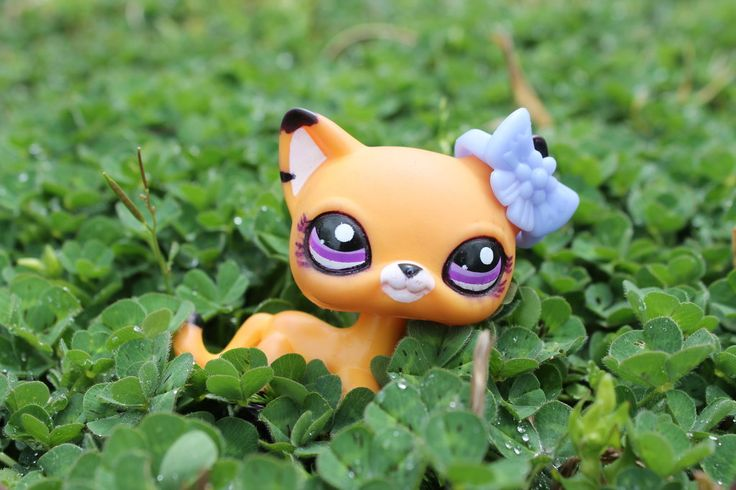 lps photography - Google Search