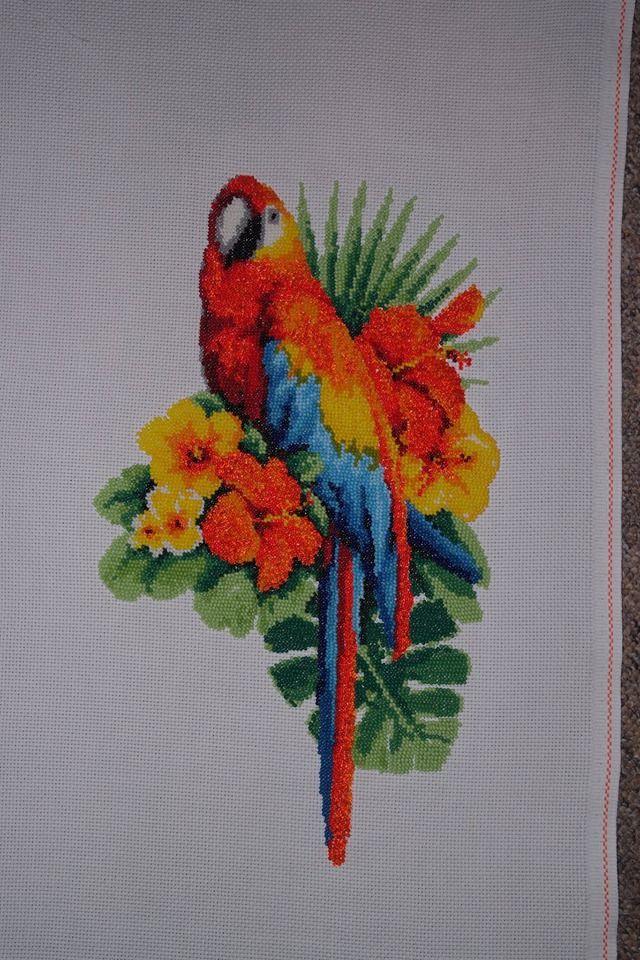 kolorowa papuga . cała z koralików