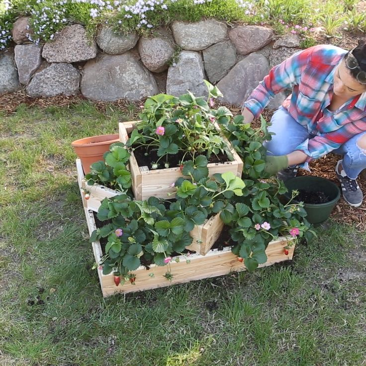 How To Make A Sleek Tiered Strawberry Planter Video 640 x 480
