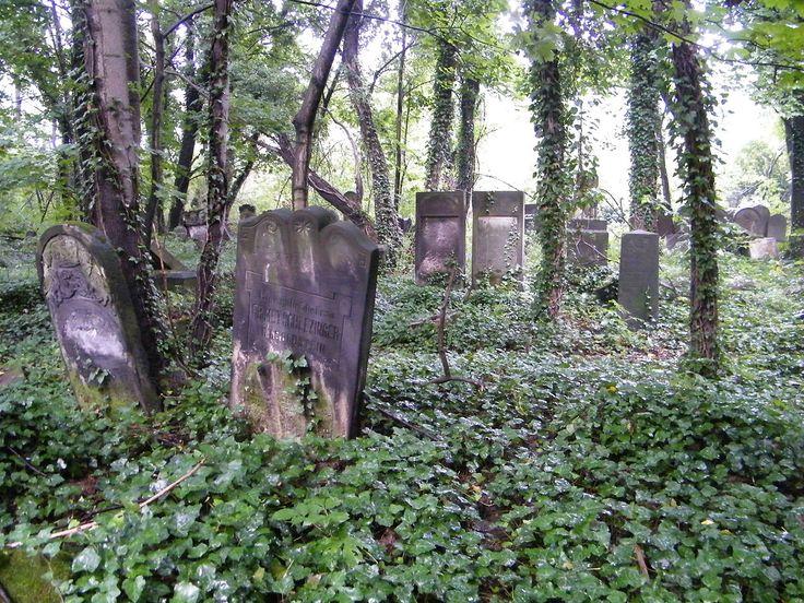 Cmentarz żydowski w Częstochowie – ul. Złota od strony Olsztyna