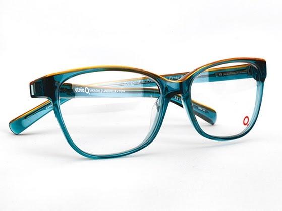 17 Best Images About Onze Brillen On Pinterest Eyewear