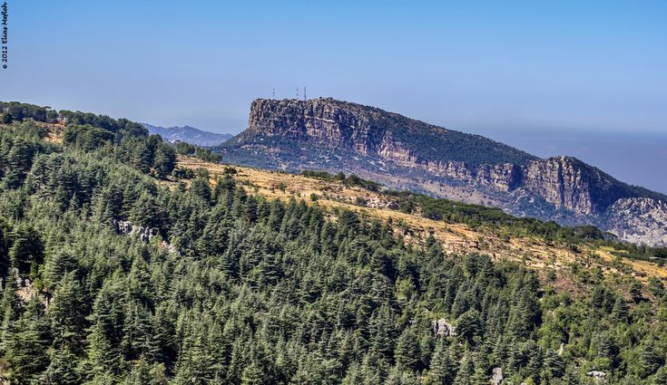 THE BEAUTY OF LEBANON - THE CEDARS OF HADATH EL JEBBEH