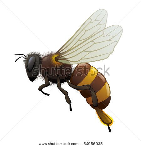 117 best bee logos images on pinterest bees honey and