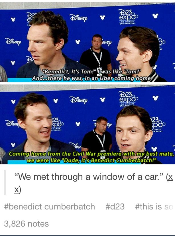 Omg haha. He didn't seem to know who it was saying that so imagine when they met again (probs for infinity war stuff) and he was just like 'oh, ok that's Tom'