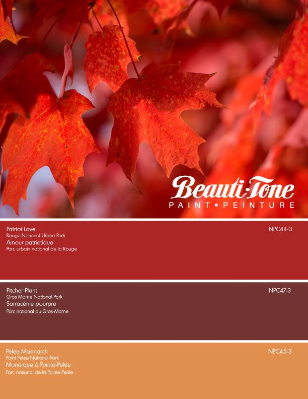 Capture the breathtaking scenery of our land with Beauti-Tone's gorgeous hues. http://bit.ly/2v9uKDD