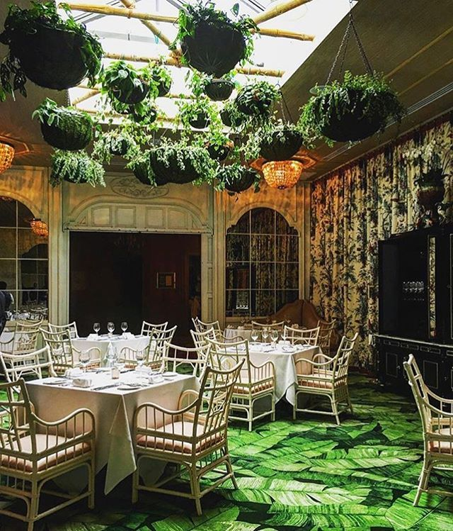 Caribbean Room At The Pontchartrain Hotel (New Orleans, LA) | Restaurants I  Want To Go To | Pinterest | Caribbean, Crescent City And Restaurants