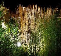 Belysning i trädgården|Vi i Villa