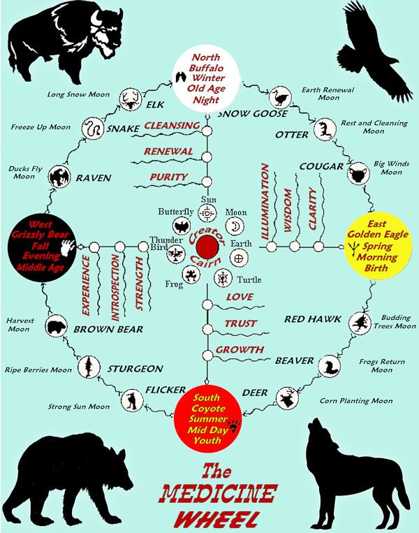 medicine wheel lakota - Google zoeken